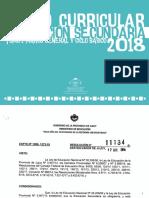 t1 Dg - Marco General y Ciclo Basico_definitivo