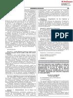 Reglamento agente de carga.pdf