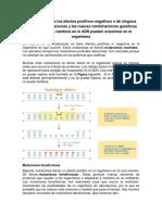 Interpretación de Los Efectos Positivos Negativos o de Ninguna Clase de Las Mutaciones y Las Nuevas Combinaciones Genéticas Que Producen Cambios en El ADN Pueden Ocasionar en El Organismo