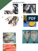 Fish Market Forms Etc