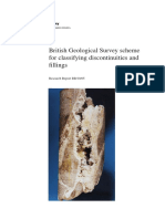 Discontinuities and Fillings Cassification - BGS_2011.pdf