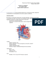 Catedra de Cardiología - MLNG