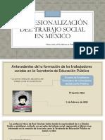 Profesionalizacion Del Trabajo Soial en México