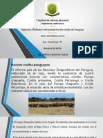 Criollo Paraguayo-Molina Jose Luis