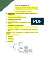 Copia de Tema 7.Asfixia Mecanica Puntos