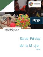 Ficha Diplomado Online Matronas