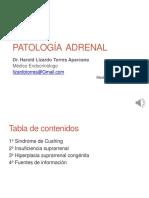 patologia adrenal