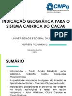 INDICAÇÃO GEOGRÁFICA PARA O SISTEMA CABRUCA DO CACAU - análise artigos.pptx