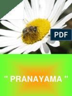 Pranayama - Respiração