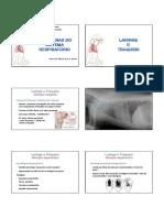 Patologia Do Sist. Resp 2 Medicina  Veterinária