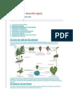Reproduccion y Desarrollo Vegetal
