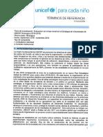 TdR Evaluacion Estrategia de Voluntariado UNICEF Nicaragua