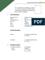1curriculum Vitae Roberth Tapullima Quintana Autoguardado