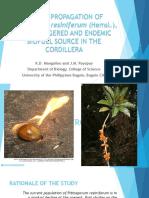 Bio 200 Proposal Presentation(Mangalino&Payopay)