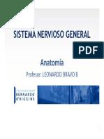 SN 2019 (1).pdf