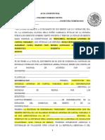Acta Constitutiva Polimex (1)