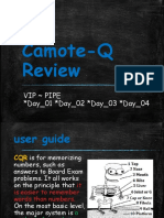 Camote-Q_Review_(VIP~PIPE).pptx
