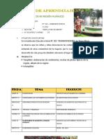 PROYECTO-DE-APRENDIZAJE-N-6-AGOSTO-2019.docx