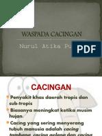 Penyuluhan_cacingan.ppt