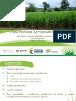 10-Presentacion Censo Agropecuario