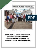 PLAN ANUAL DISCAPACIDAD 2019.docx