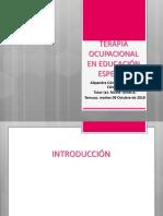 Terapia Ocupacional en Educación Especial