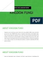 Kingdom Fungi Group 3 Post Lab