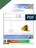 APE (Linee Guida 2015) del 10-07-2019_17-15