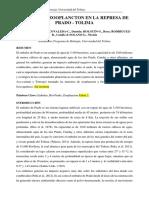 Informe Embalse Prado