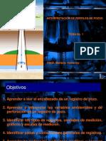 TEMA_I_inter_perfiles.ppt