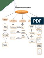 Mapa Conceptual Texto Argumentativo