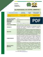 Tecnico Profesional Control Ambiental