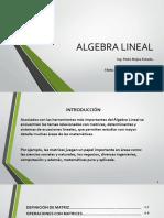 Presentación Algebra Lineal