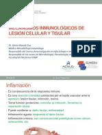 S9 Lesion Celular y Tisular Final