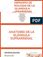 Semiologia de La Glandula Suprarrenal 1
