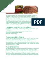 La Cañihua Es Un Grano Muy Nutritivo Perteneciente Al Igual Que La Quinua a La Familia de Las Quenopodeaceas Considerado Dentro Del Grupo de Cereales