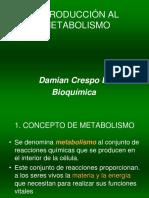 introduccion metabolismo
