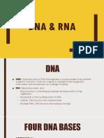 BIOLOGY GRADE 11 DNA & RNA
