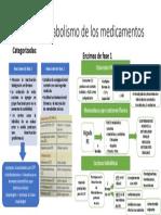 fases del metabolismo de medicamentos.pptx