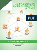Multiplicación de discípulos, grupos e iglesias I BYN