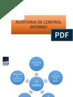 Introduccion Al Control Interno