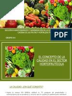 Mantenimiento y maximización de la calidad a través de la cadena de las frutas y hortalizas frescas