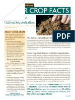 Cover Crops and Carbon Sequestration
