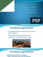 Ambiente, Comportamiento Organizacional, Estrategia Organizacional y