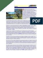 Ecosistema Del Espinal
