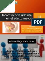 INCONTINENCIA URINARIA.pptx