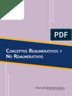 Conceptos Remunerativos y no remunerativos