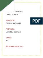 C. NATURALES.docx