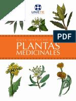 Guia Mapuche Para Plantas Medicinales