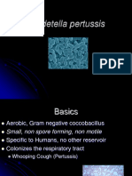 B pertussis.ppt